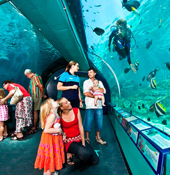 family enjoying reef hq aquarium in Townsville with guide