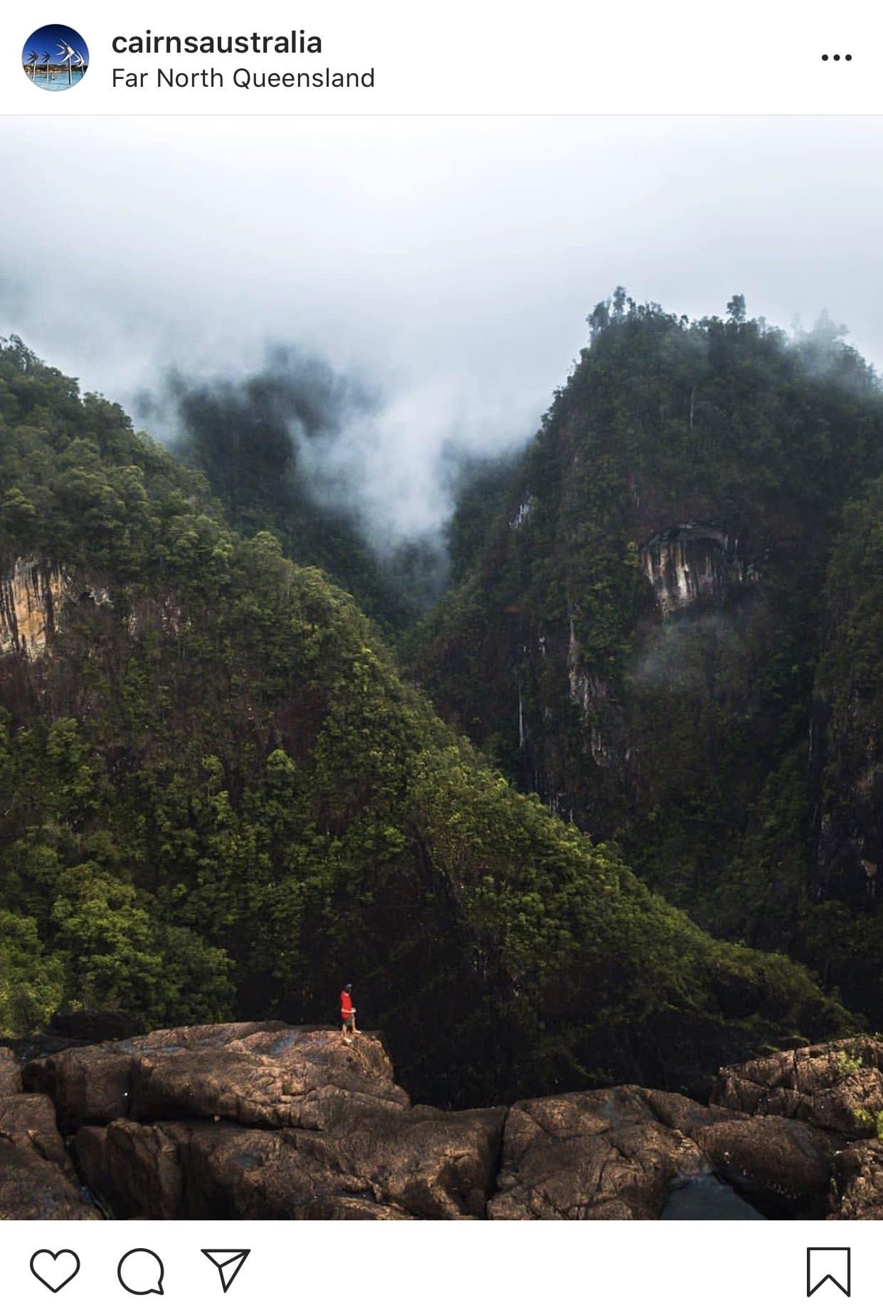 North Queensland Rainforests