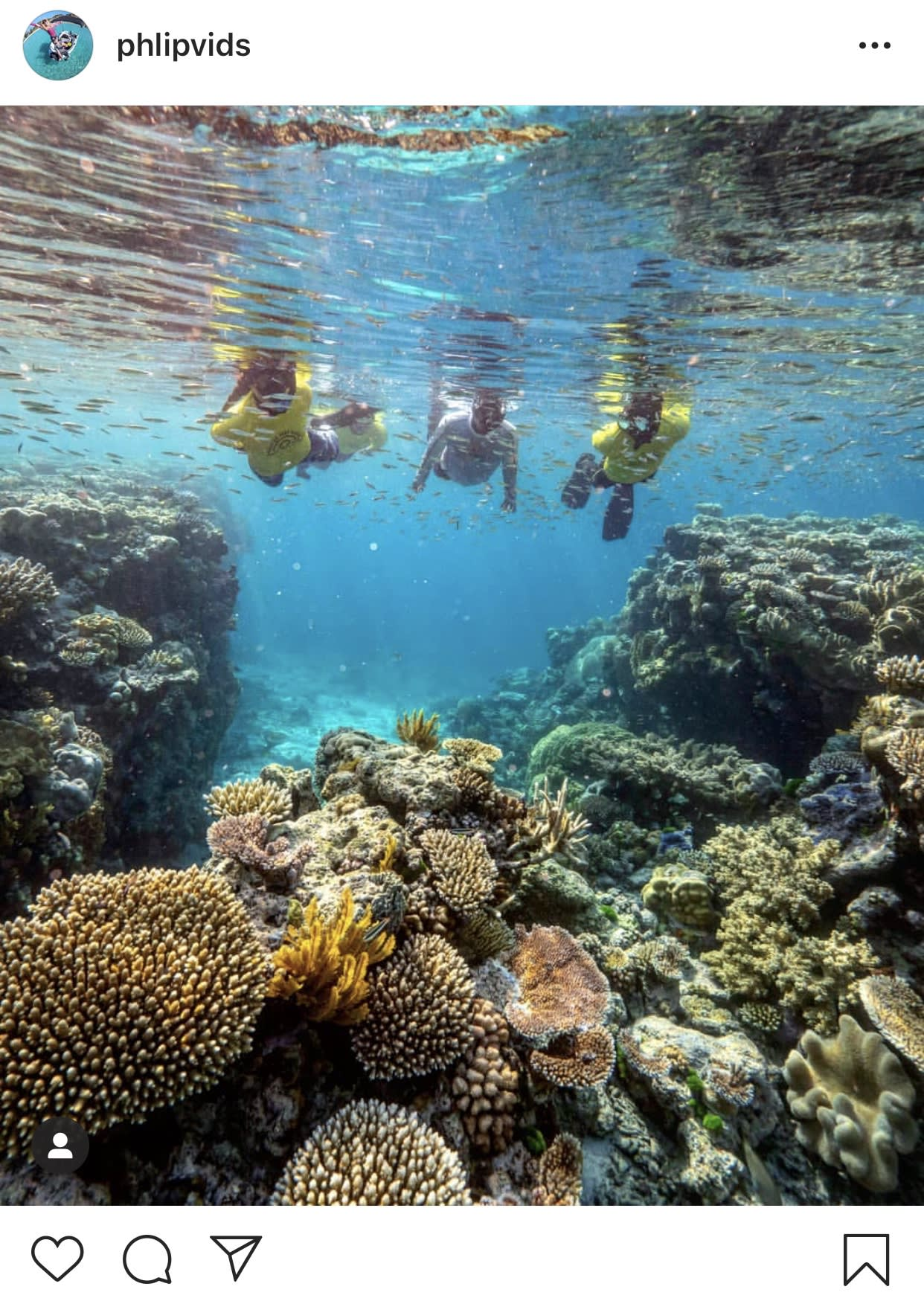 Snorkelling at the Great Barrier Reef in Cairns