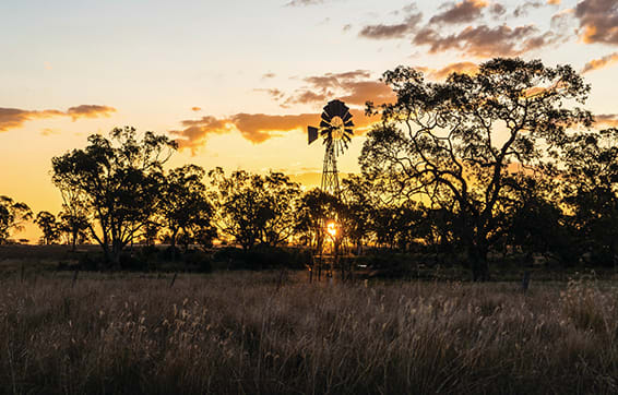 countryside in Queensland near Oaks Middlemount hotel at sunset close to airport, QLD, Australia